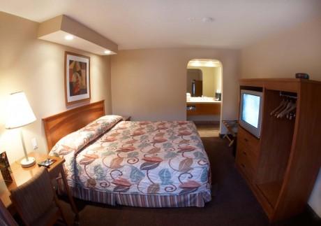 Welcome To EZ 8 Phoenix Airporter - Single Queen Room